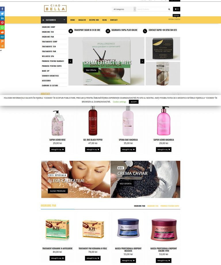 Web design, ALLHOST